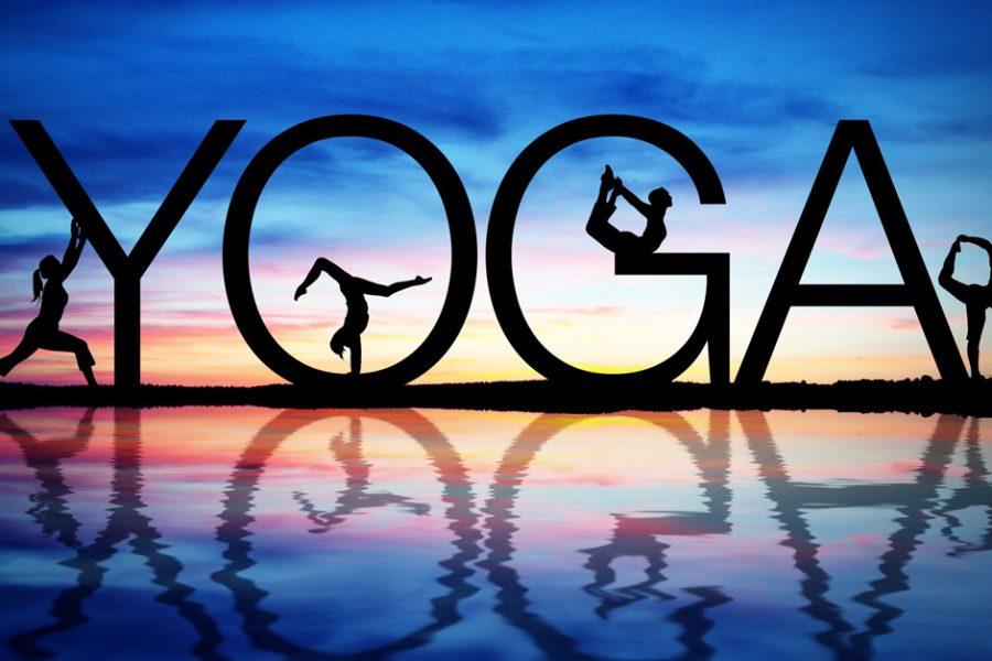 yoga15-1